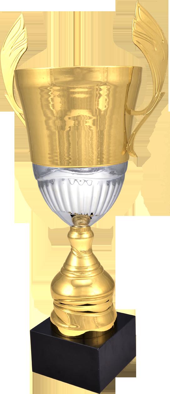 ΜΕΤΑΛΛΙΚΑ ΚΥΠΕΛΛΑ - 4128 (36-42-48-54)cm