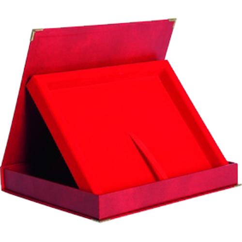 ΑΝΑΜΝΗΣΤΙΚΗ ΠΛΑΚΕΤΑ ΑΠΟΝΟΜΗΣ BTY1608/R(25cm x 20cm)