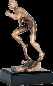 ΑΝΑΓΛΥΦΑ ΤΡΟΠΑΙΑ -  ΔΡΟΜΕΑΣ RTY3716 (20cm)